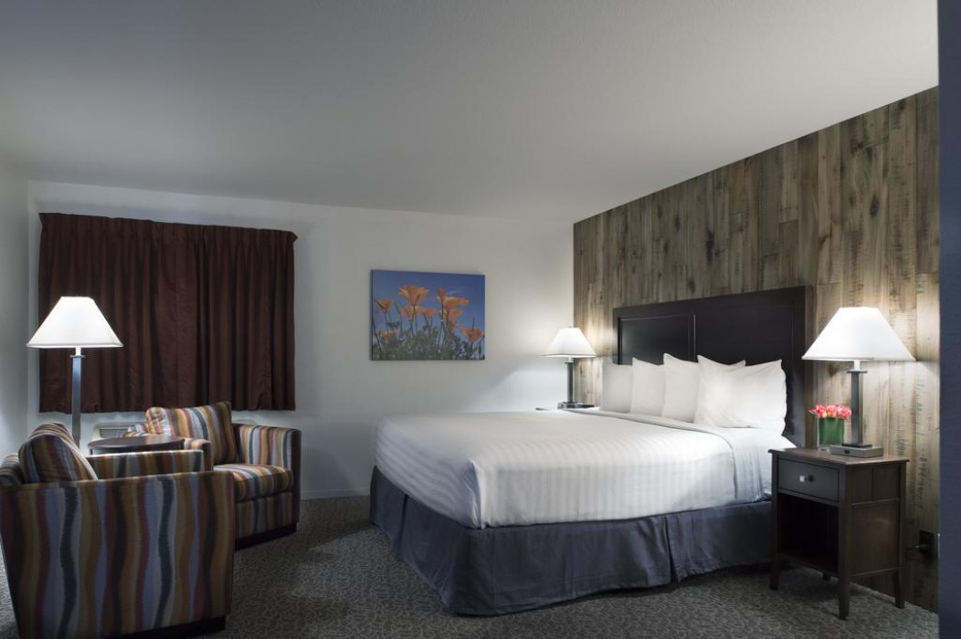 Mission Inn & Suites - Guest room with 1 bed