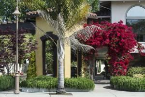 Mission Inn & Suites - Mission Inn & Suites Exterior